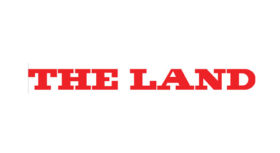 logo-the-land-skye-saunders